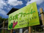 成る実ファーム保育園児苗植え(2010/5/14)